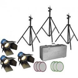 Arrilite 600 Watt 3 head kit