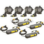 Dedolight 150 Watt 4 head kit